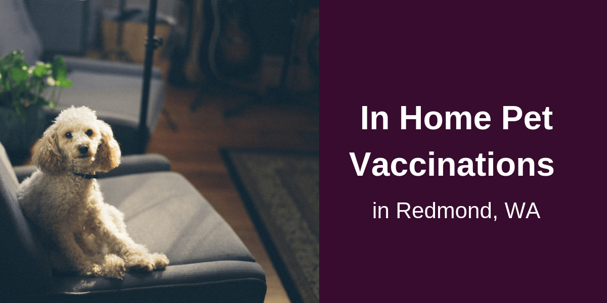 In Home Pet Vaccinations in Redmond, WA